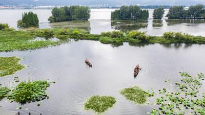 La foto aérea muestra el personal de mantenimiento trabajando en el parque Wetland de Yongchang en el lago Dianchi en Kunming, ciudad capital de la provincia de Yunnan en el suroeste de China (PRNewsfoto/Xinhua Silk Road)
